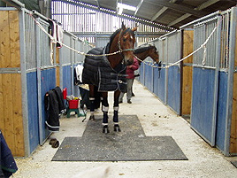 stables_1